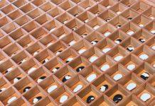 Caixa de mdf com sementes: cerâmica e pintura acrílica.