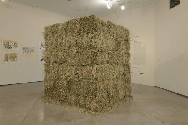 """""""Fio"""", uma das obras de Cildo Meireles em exibição no 34º Panorama da Arte Brasileira"""