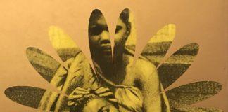 Detalhe da Capa do livro Um defeito de cor