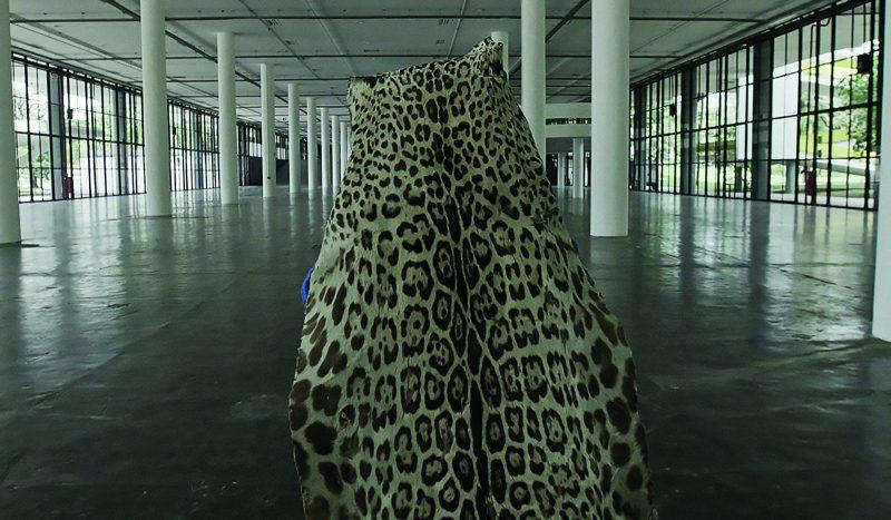 O artista Edgar Calel veste pele de onça em ritual ancestral no prédio da Bienal em São Paulo