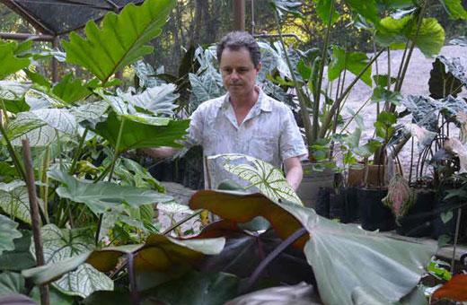 Instituto José Rufino: lugar de pensar arte, ciência e natureza