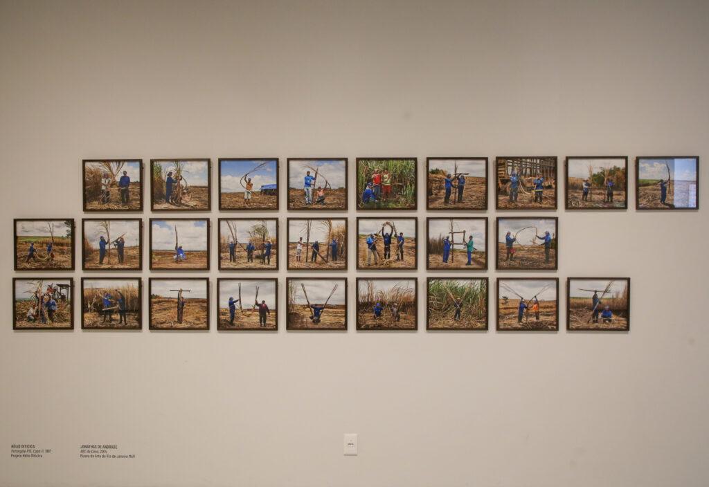 """Na exposição """"Língua Solta"""", a obra """"ABC da Cana"""" (2014) de Jonathas de Andrade. Foto: Ciete Silverio / Divulgação."""