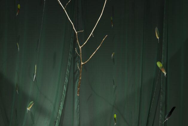 "Regina Vater. Detalhe de ""Rama Dourada"". Foto: José Pelegrini."